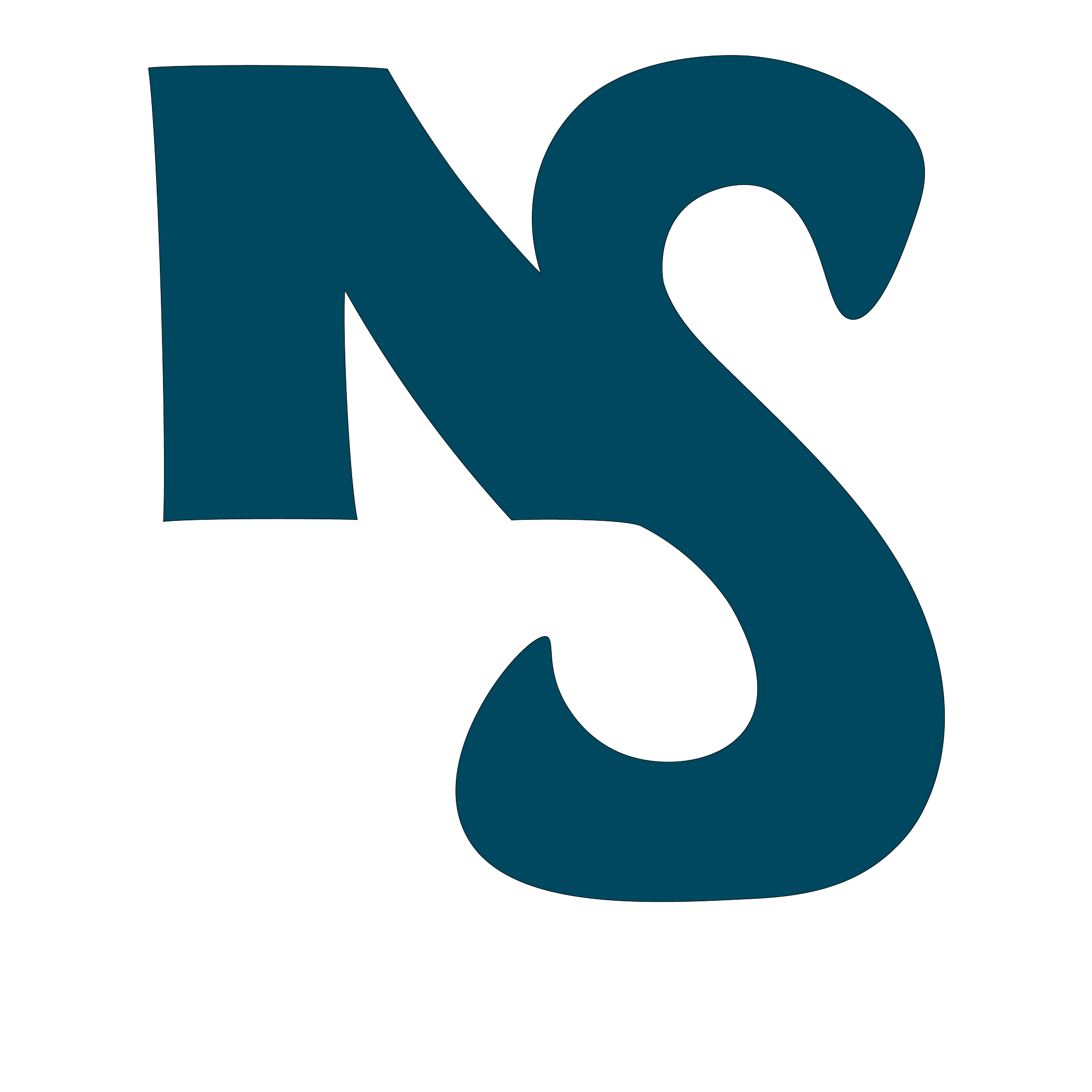 NS Schneider Media